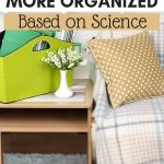 reasons to be organized