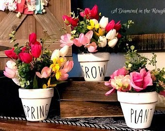 Terracotta Pots with Flowers