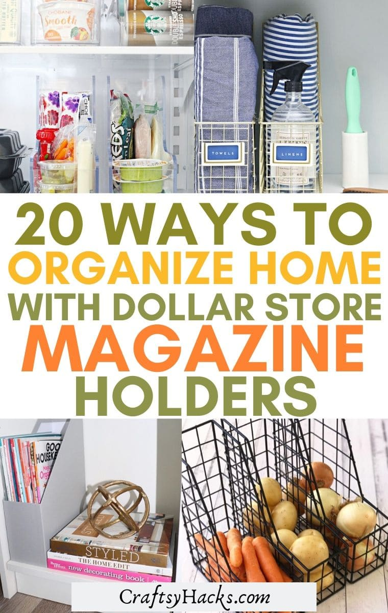 dollar store organization hack with magazine holders