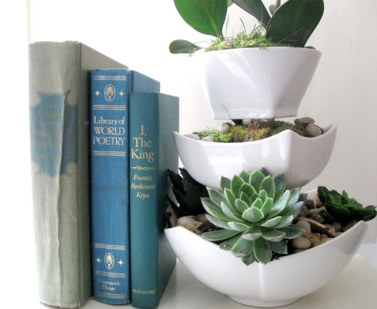 Succulent Display Bowls