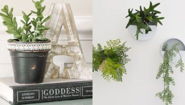 dollar tree planter ideas