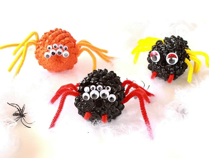 Pine Cone Spiders