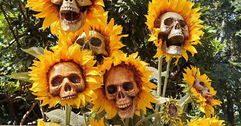 Sunflower Skulls