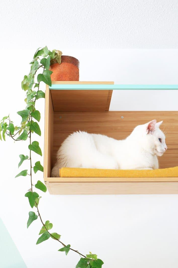 wall-mounted cat shelf