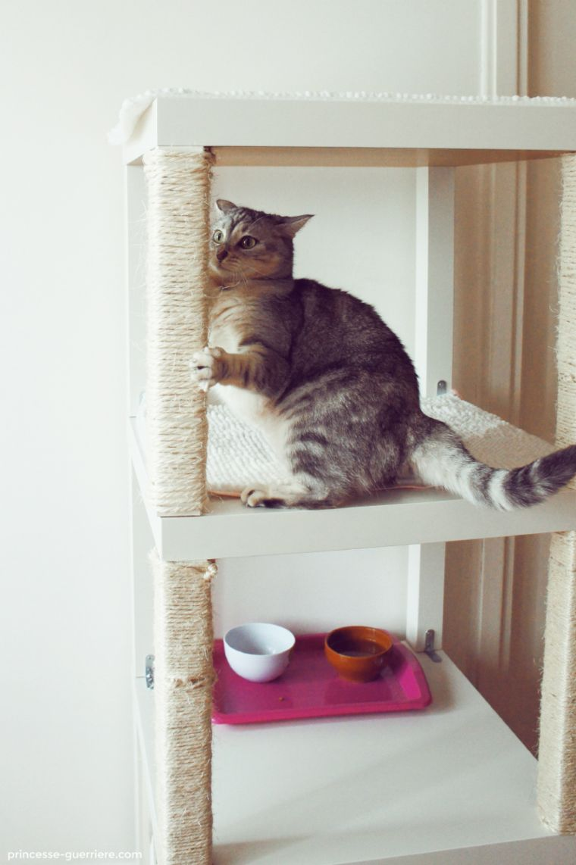 Vertical Cat Lounge