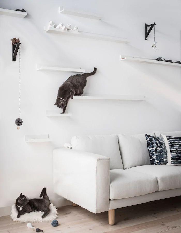 Floating Cat Steps