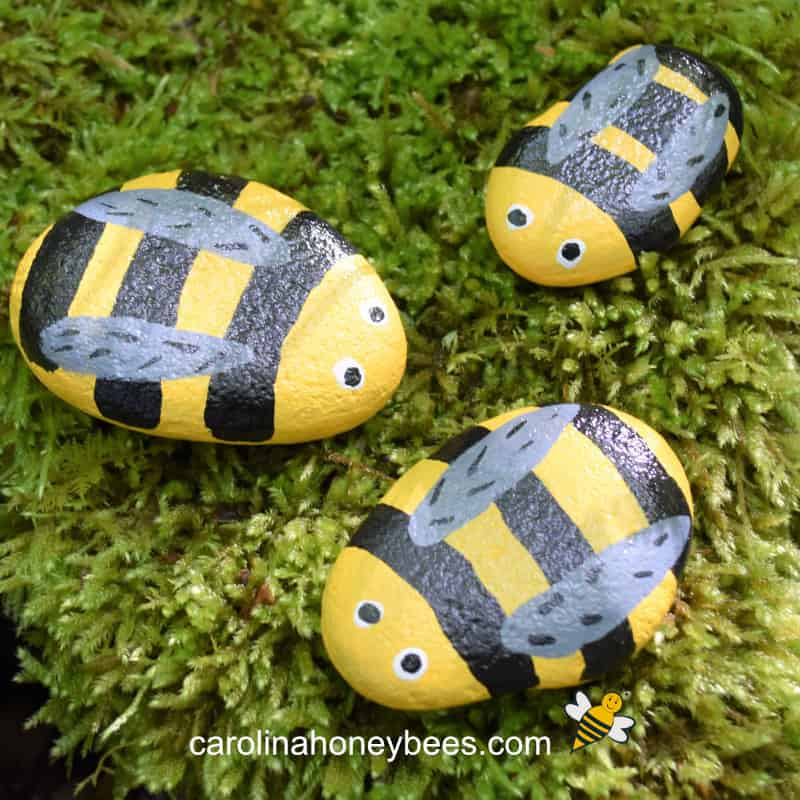 DIY Bee Rock Pets