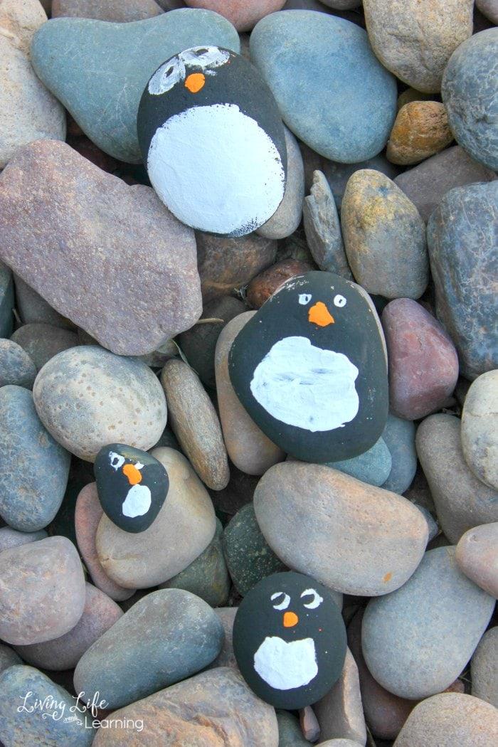 Penguin Rock Pets