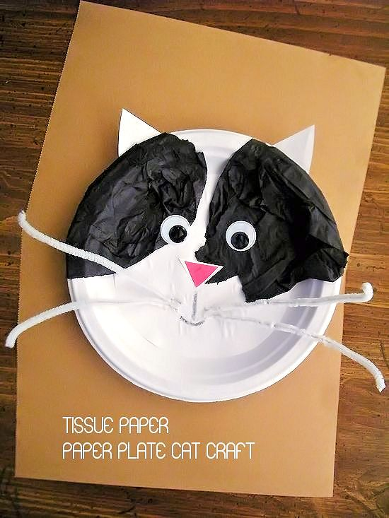 Tissue Paper Plate Cat