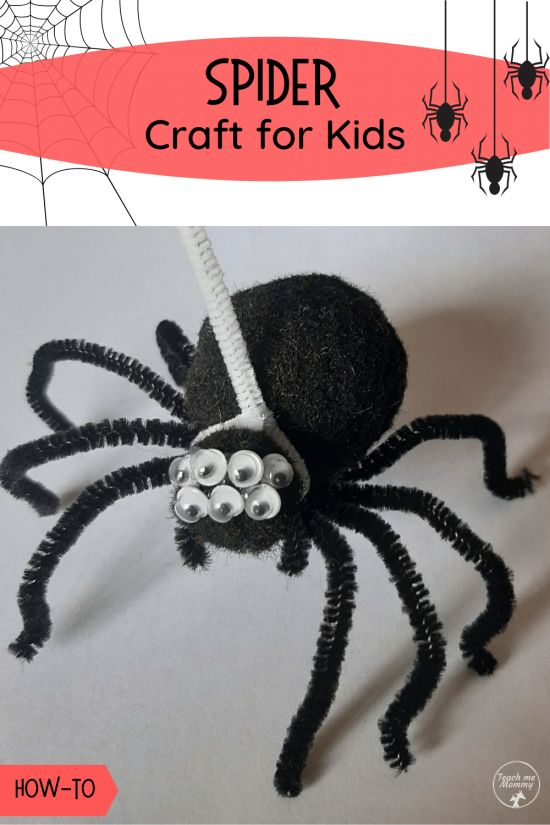 pet pipecleaner spider