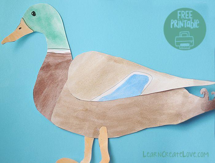 Printable Mallard Ducks