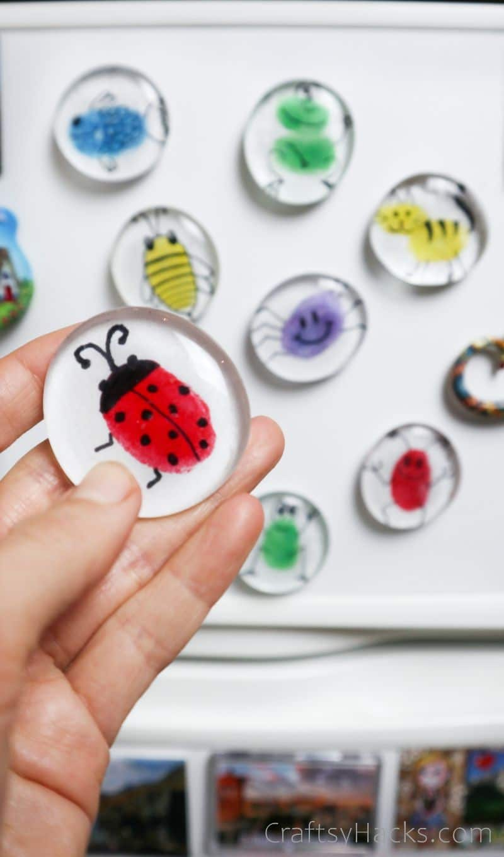 holding ladybug magnet in front of fridge