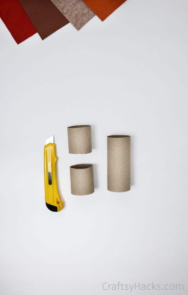 cut toilet paper roll