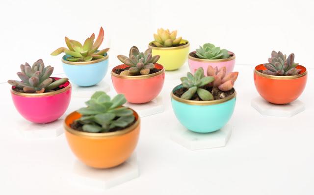 Gold-Rimmed Mini Succulent Planters