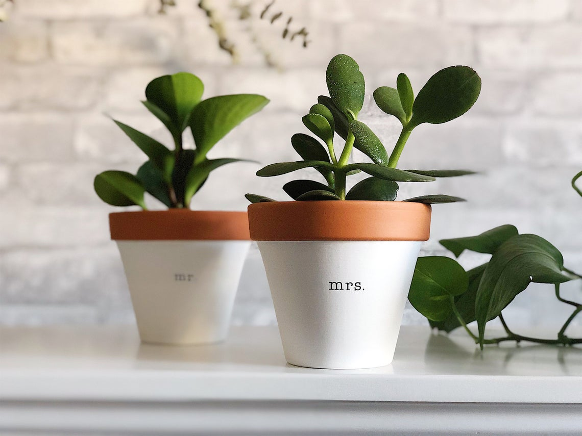 mr and mrs planters