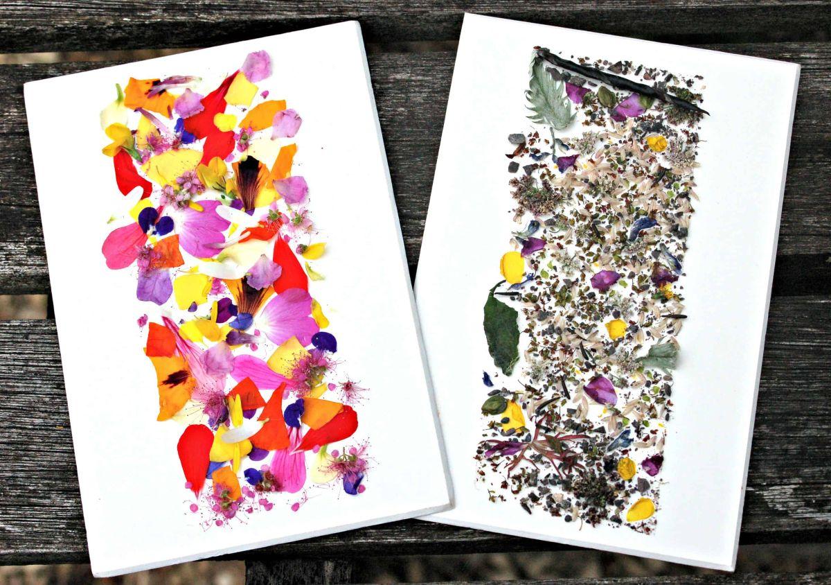 Sticky Nature Cards