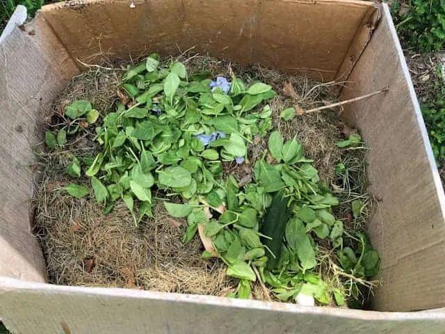 Cardboard Box Compost Bin