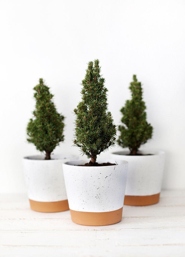 DIY Splatter Planter