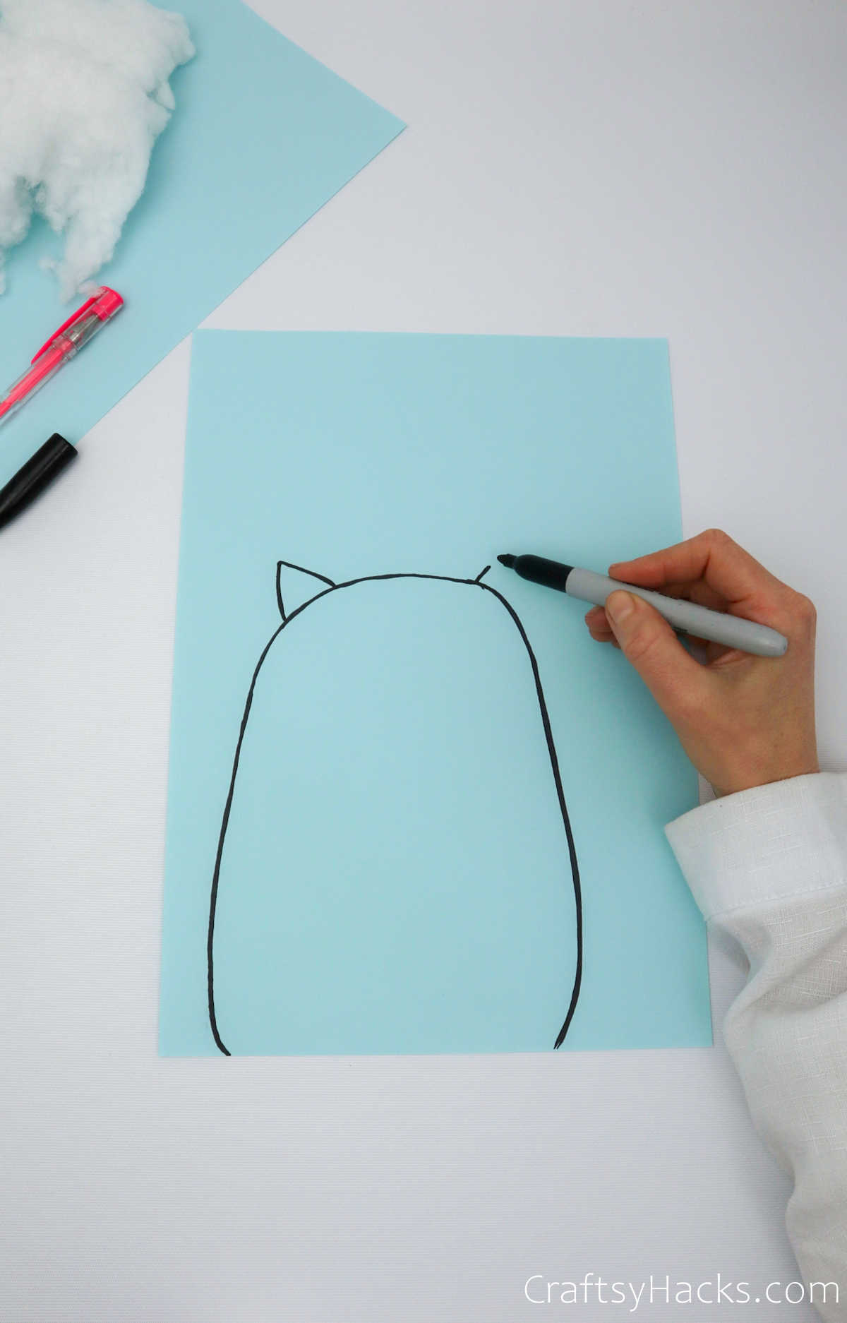 drawing cat shape on paper