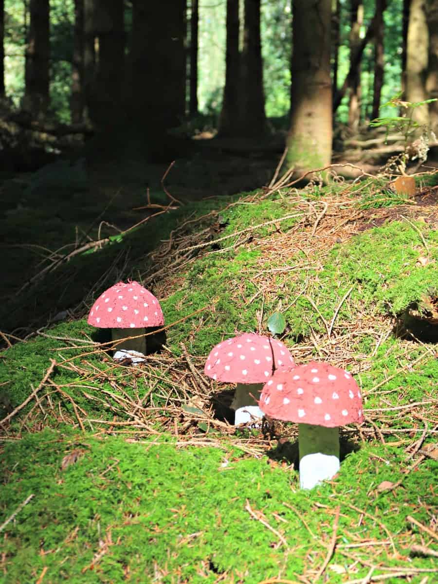 Fairy Toadstools