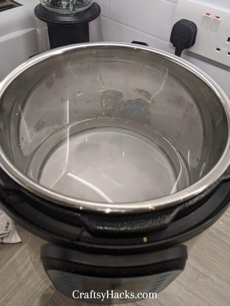 Freshen Up Your Instant Pot