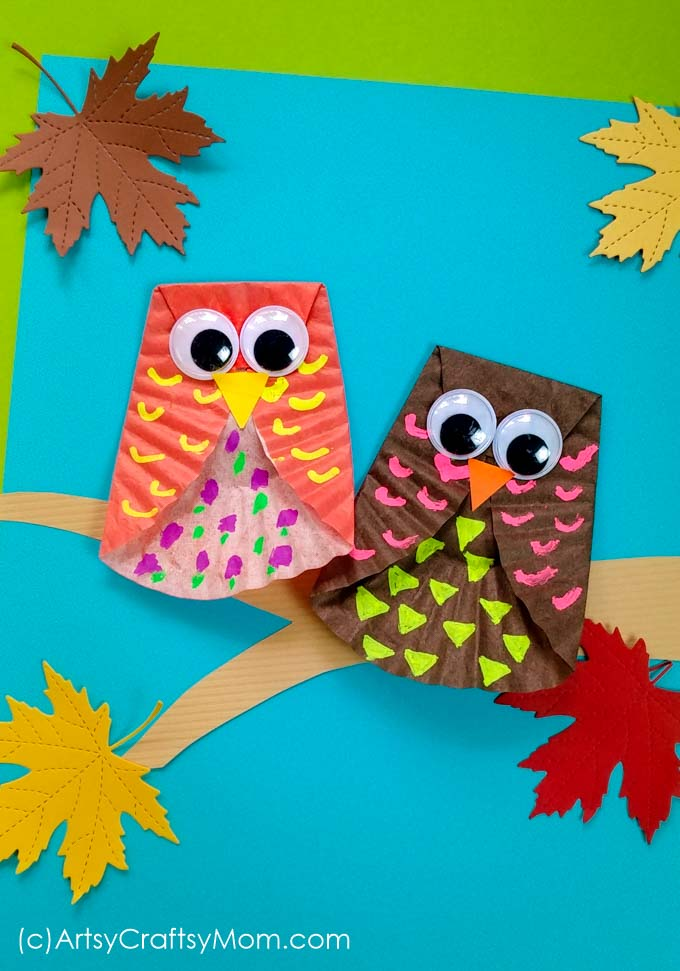 Cupcake Liner Owl
