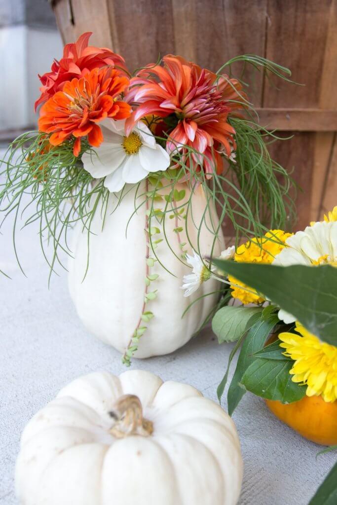 Mini Fresh Pumpkin Vase